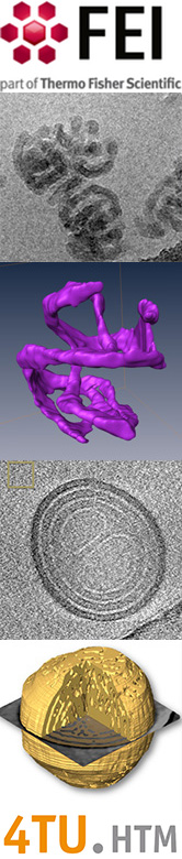 several examples of CryoTEM images and tomography