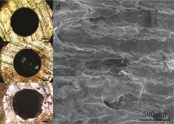 Optical micrographs showing the surface of a 3D printing nozzle before and after printing